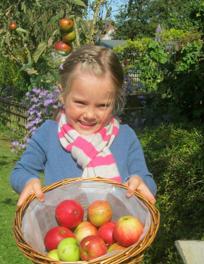 Tilda Borthwick (4) looking forward to Marlborough Apple Day