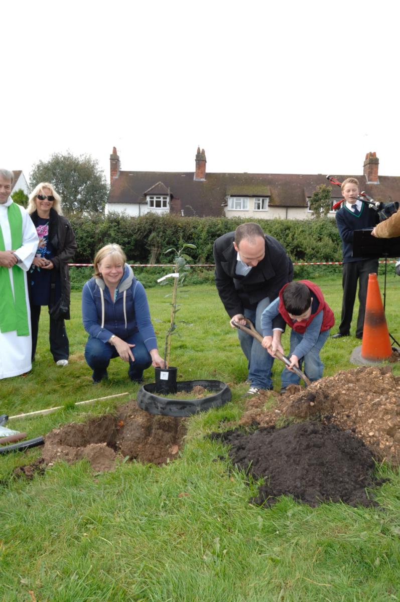 St John's team planting the 'Roundway Magnum Bonum' tree