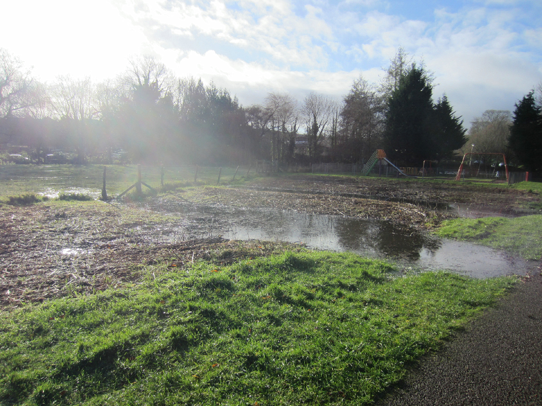 Coopers Meadow in flood - 25th Nov