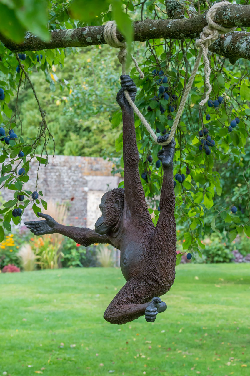 'Ginger' the monkey reaches out to grab a plum as she hangs from a tree in Avebury Manor's Orchard.  By Stroud sculptor Martin Adamson