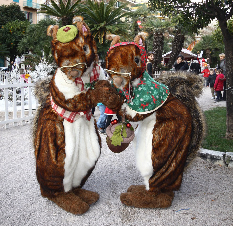 Mr and Mrs Nutkin are nuts about Christmas!