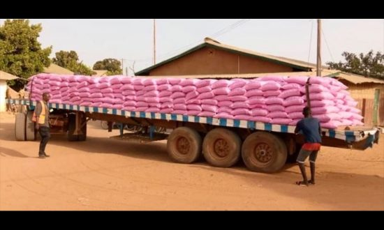 Lorry load of rice arriving in Gunjur for TARUD to distribute. Pic: Gambia Online