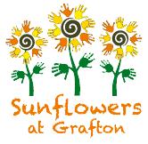 Sunflowers-at-Grafton-nursery